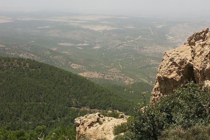 Jebel Chambi Nemzeti Park