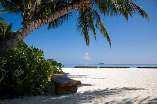 Kerkennah-szigetek magányos partja