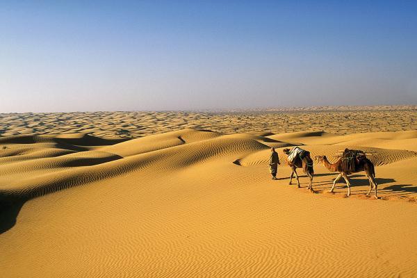 Sivatagos táj Douz környékén