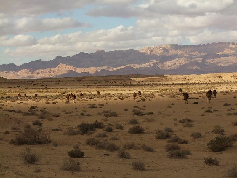Tunézia sivatagos belső vidéke